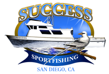 Success Sport Fishing